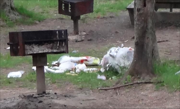 garbage example07.jpg