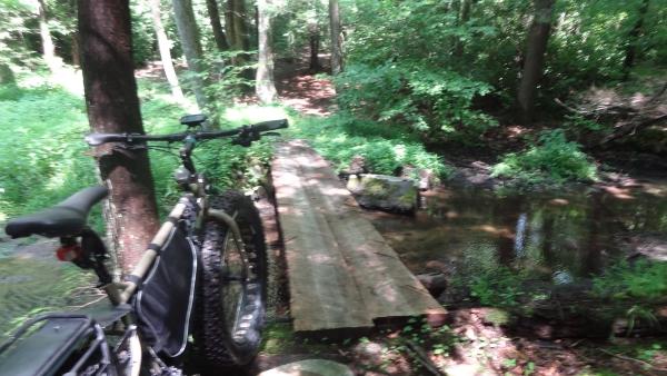 Gary's bridge02.jpg
