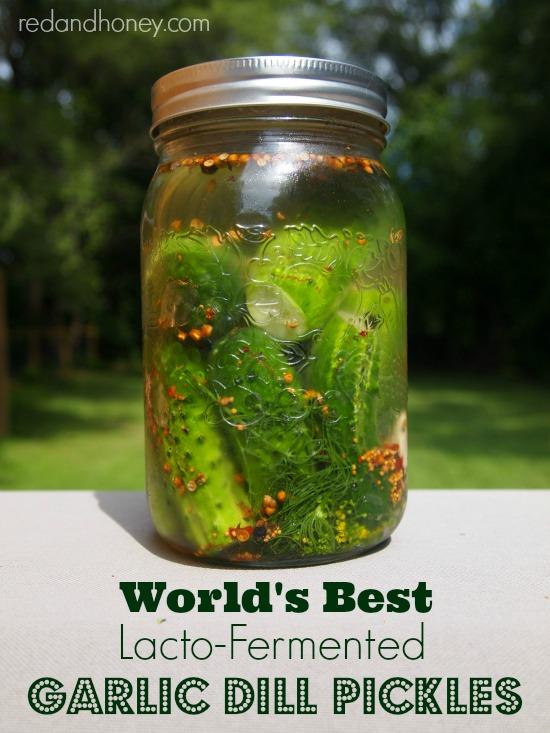 lactoermented-pickles.jpg