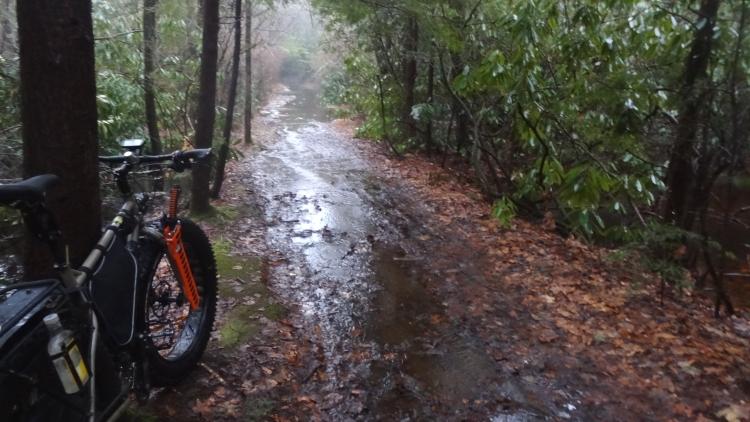 muddy1.jpg