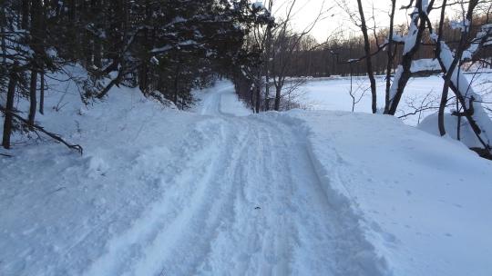 SnowTrail03.jpg
