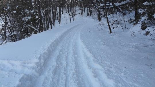 SnowTrail04.jpg
