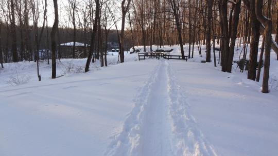 SnowTrail05.jpg