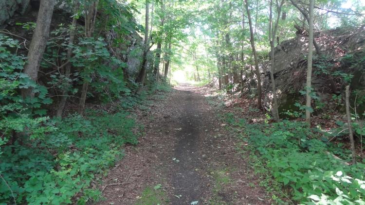 Sussex Branch Trail05.jpg